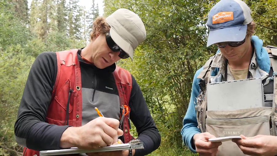 Biologists survey grayling populations