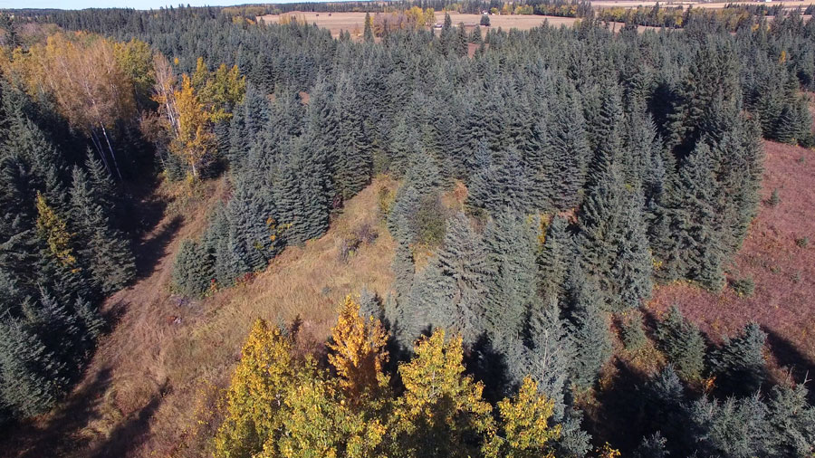 Aerial of Porter property, near the Raven River