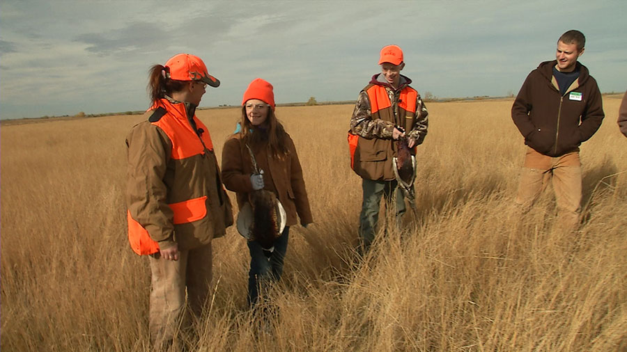 Pheasant hunters at the Novice Hunt