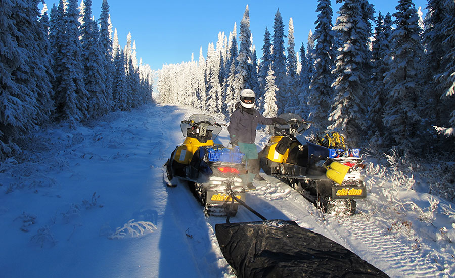 Boreal forest snowmobile ride