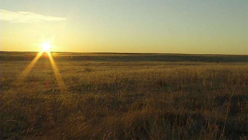 Sunset on prairie grasslands in Southern Alberta