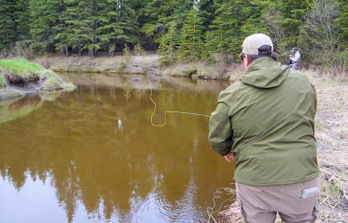 The Raven River can offer anglers a real challenge for several fish species.