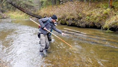 The future of thousands of Brown Trout lay in the balance as a gravel pit operation looks to operate near the head-waters of the North Raven River