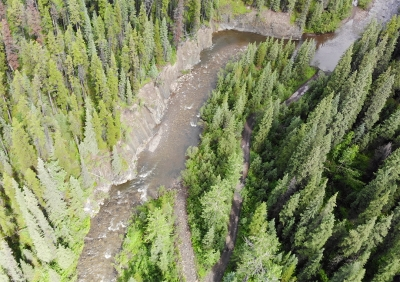 MacKenzie Creek - A model in conservation cooperation
