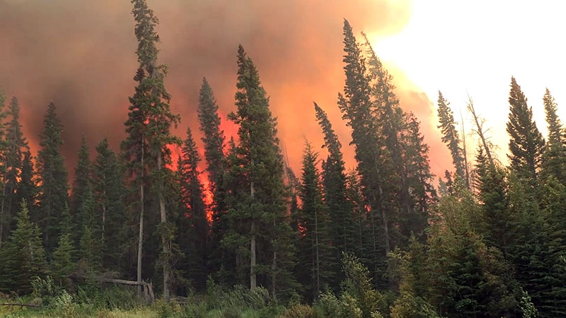 A closer look at the 2015 Wildfire season in Alberta (video)