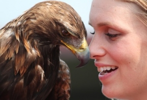 Nose to beak with Golden Eagle