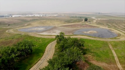 A wetland filter, or nutrient settling pond, captures the tributary flow into the Milk River Ridge Resevoir and allows nutrients to settle out